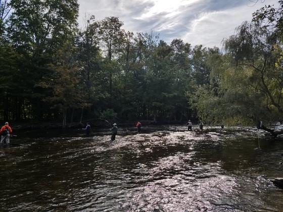 Salmon River Fishing Report 8/20/2019