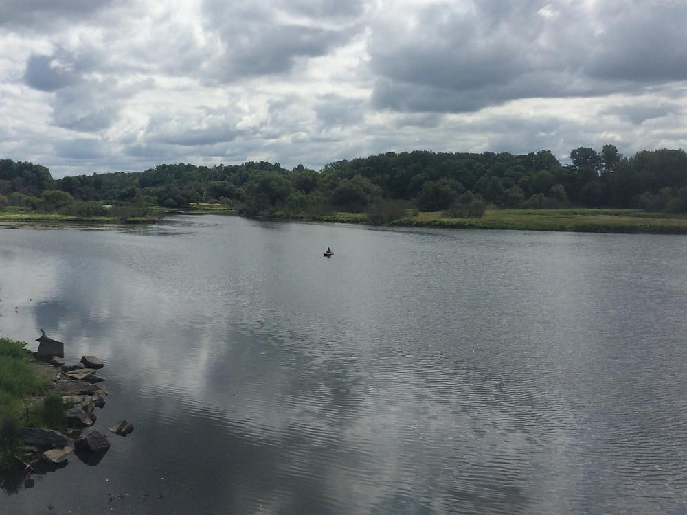 At the Estuary 8/19/18