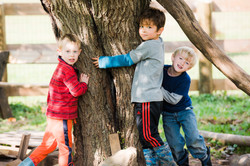 Tree Hugging 2016.jpg