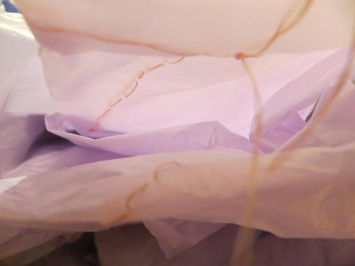 LILAC folded, Detail
