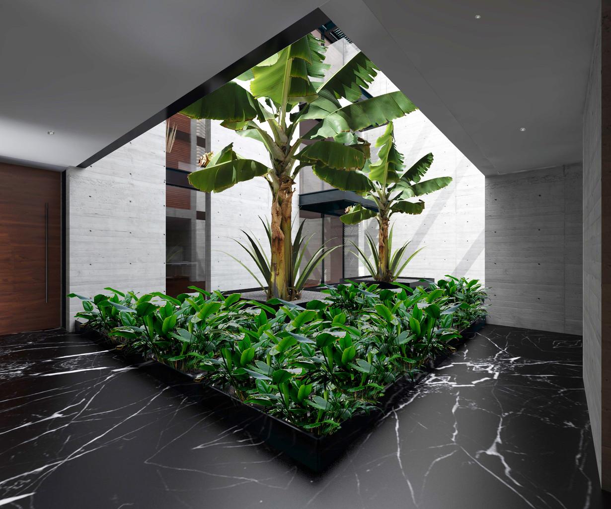 solon interior jardin central 2020.jpg