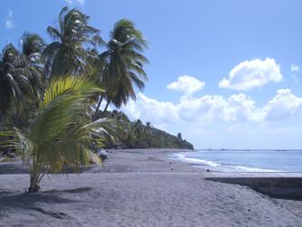 South-Caribbean arrival !