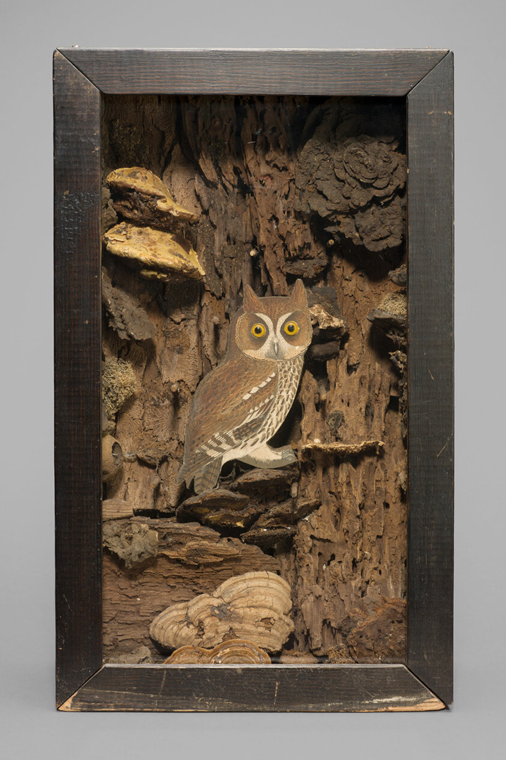 Joseph Cornell, Untitled (Large Owl) 194