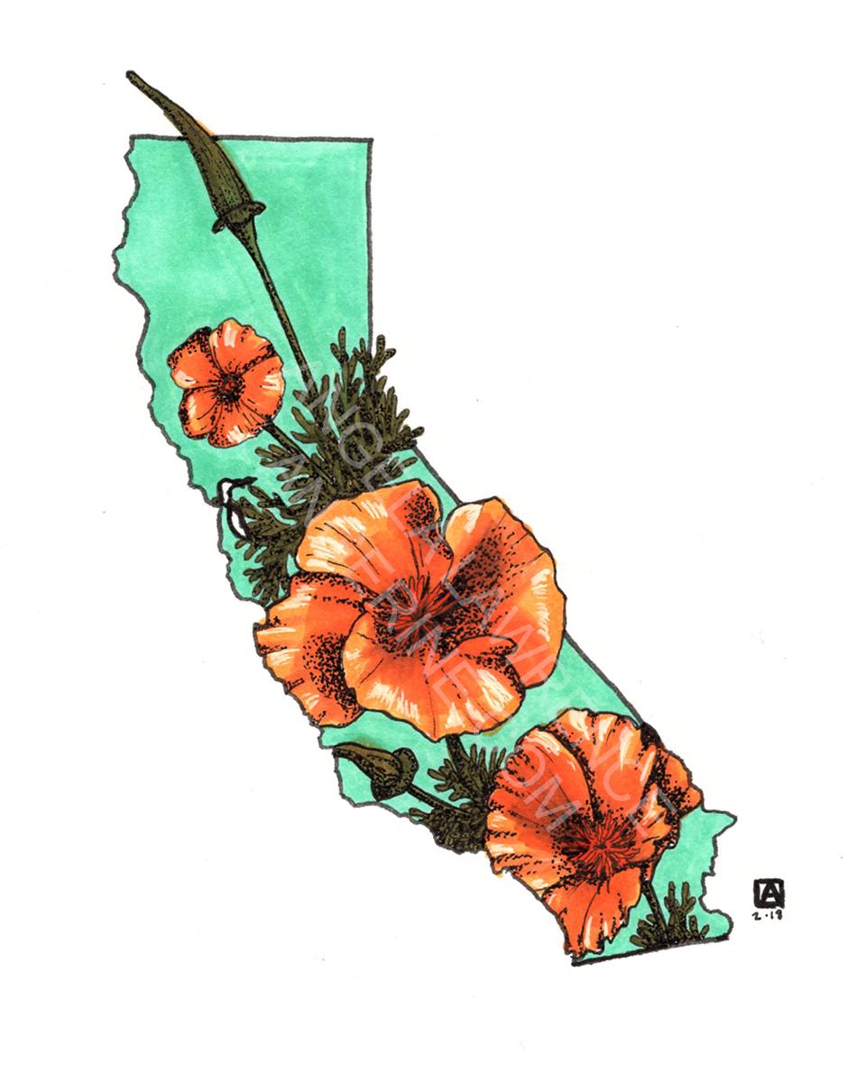 Cali (colored)