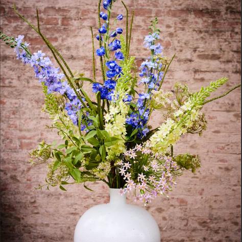 Flowers, Plants & Foliage