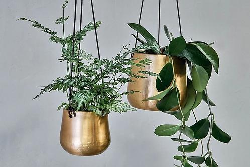 Atsu Brass Hanging Planters