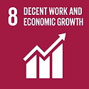 TheGlobalGoals_Icons_Color_Goal_8.png