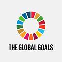 wheel The global Goals - The Bike Hub.pn