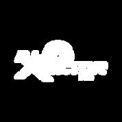 X Factor 2020 Logo White.png
