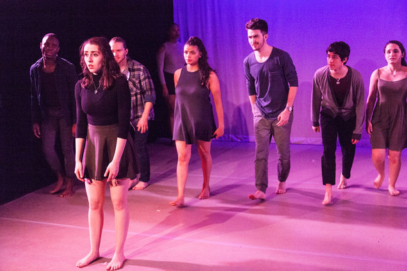 The Dance Project 2017, Wagner College
