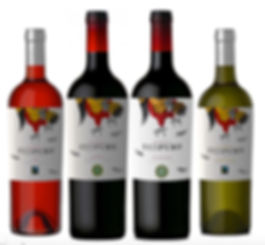 "Redpuro is our Reserva line, our ""work horse"" pallet pleaser wines that fill the expectations from our consumers. These rounded, medium bodied tasty wines are aged for 6 months in French oak barrels. ""The Pure Red"" is the bread of the magnificent roosters from South America. In these wines express their passion and purity, we believe that our packaging is superb and memorable along with deep and clean taste of our wines."