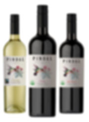 Pindal Organic wines are young and friendly wines designed to please begginers and experienze wine drinkers. It is said that Pindals (Hummingbirds) bring wisdom form the elders and their love to live after they are gone.