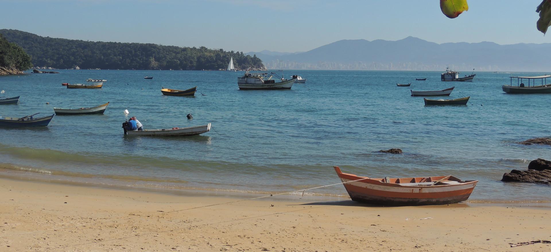 Praia do araça