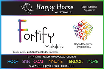 Fortify Maintain Front-01_edited.jpg