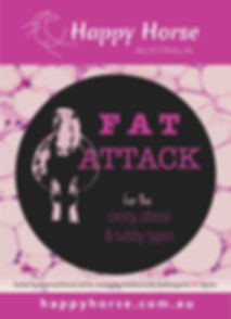 Fat Attack Front web.jpg