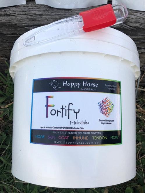 Fortify Maintain Bulk Bucket