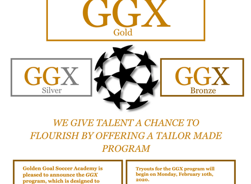 INTRODUCING THE GGX PROGRAM