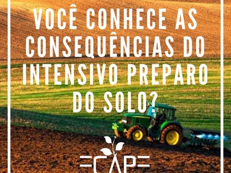 Consequências do excessivo preparo do solo