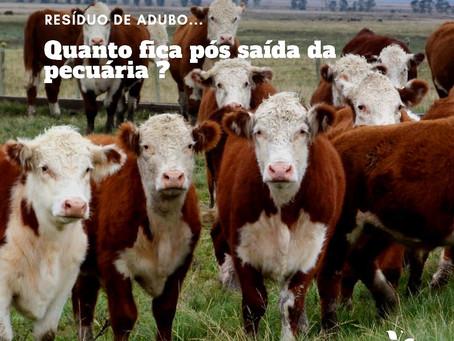 Exportação e ciclagem de nutrientes com foco na pecuária