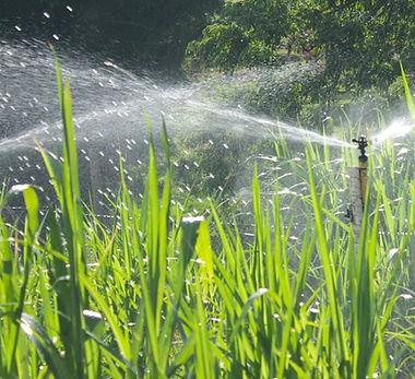 irrigacao-por-aspersao-conheca-mais-sobre-o-metodo-convencional.jpg