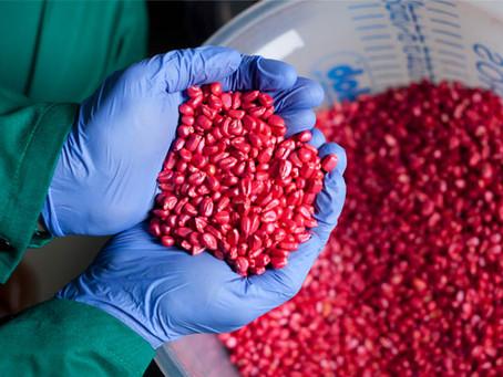 Tratamento de sementes - Investimento que garante uma boa produtividade.