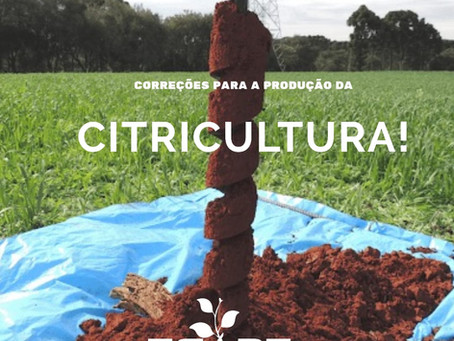 Correção da acidez e adubação do solo para citricultura