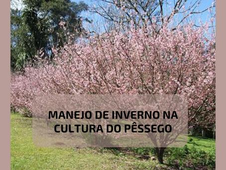 MANEJO DE INVERNO NA CULTURA DO PÊSSEGO