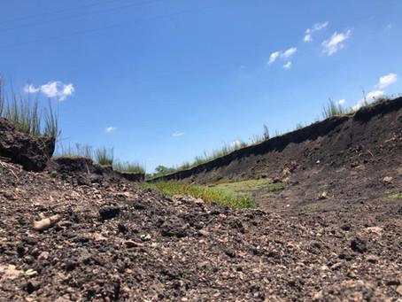Áreas Degradadas: Recuperar para lucrar!