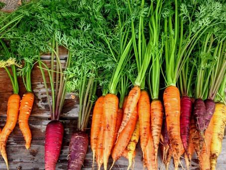 Em pequenos ou grandes espaços uma boa opção de cultivo