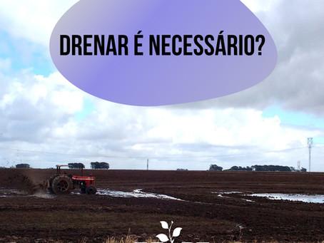Drenagem de solos agrícolas