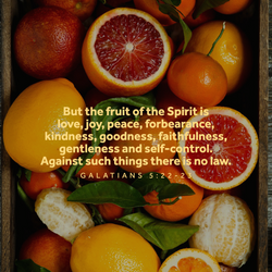 Spirit Verses 4