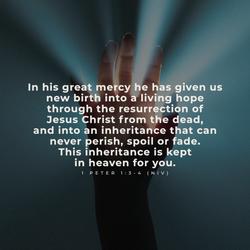 Heavenly Verses 26