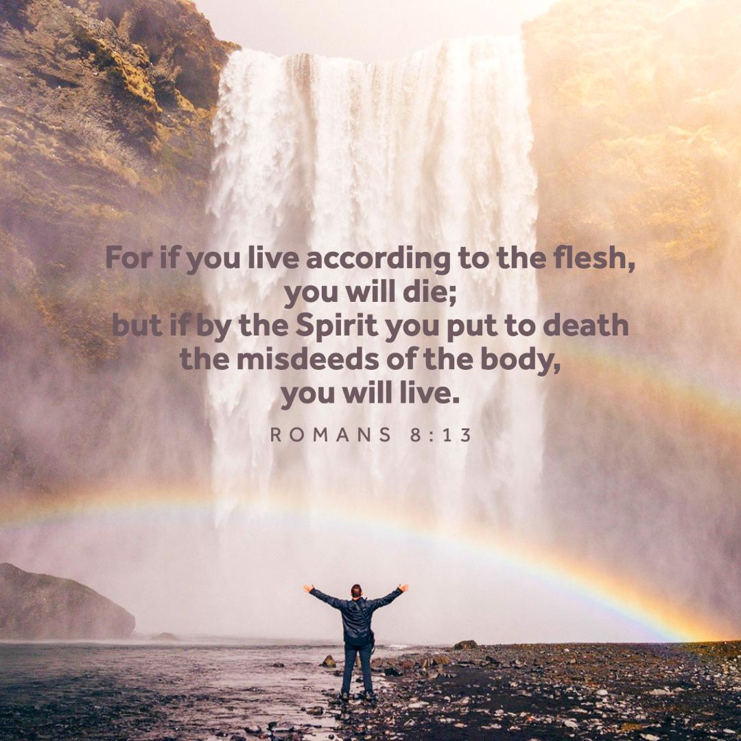 Spirit Verses 15