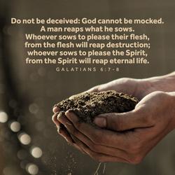 Spirit Verses 5