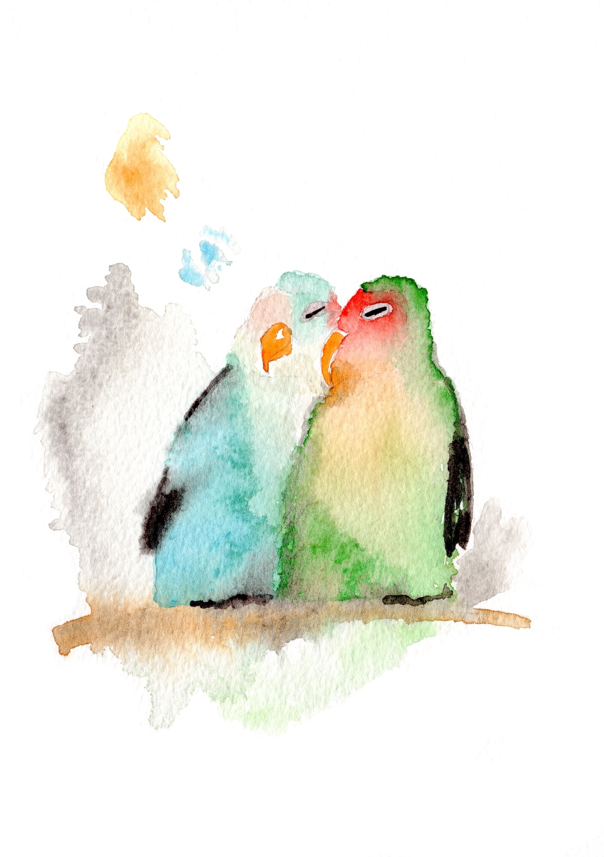 A5 parrots