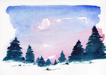 A5 pine.jpg