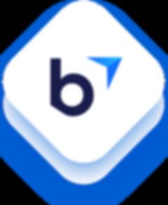 bu-ico.png