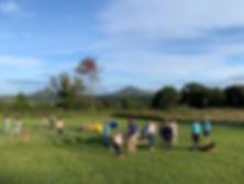 Pupp Play Park - training area.jpg