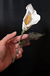 white calla lily 02.jpg