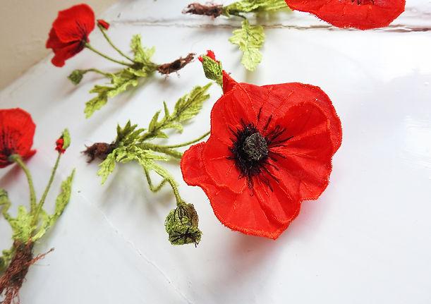 poppies-01.jpg