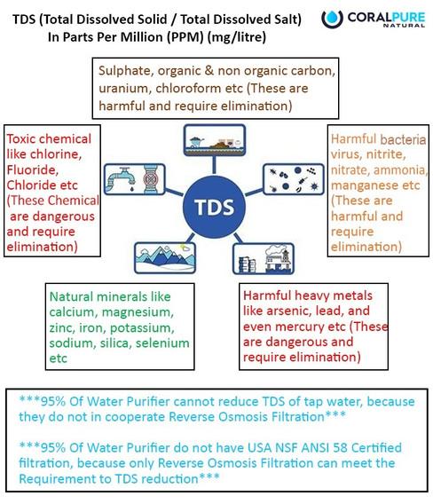 TDS JPG.jpg