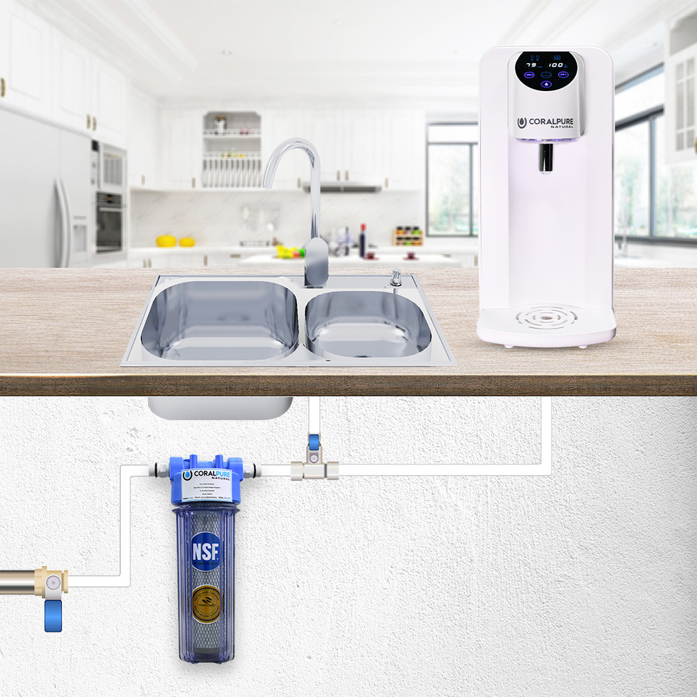 dispenser + under sink filter.jpg