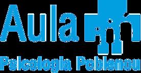 mf_logo_aula.png