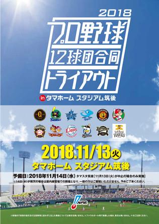 12球団合同トライアウト NPB 日本プロ野球機構 デザイナー:kenbohhh/sPUNKy designz ディレクター:ジャパンプリント株式会社