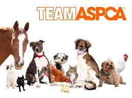 ASPCA_Friends.jpeg