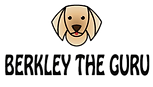 Berkley-The-Guru-Logo_edited_edited.png