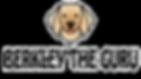Berkley-The-Guru-Logo_edited_edited_edit
