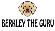 Berkley-The-Guru-Logo_edited_edited_edit