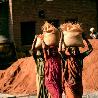 India189.jpg