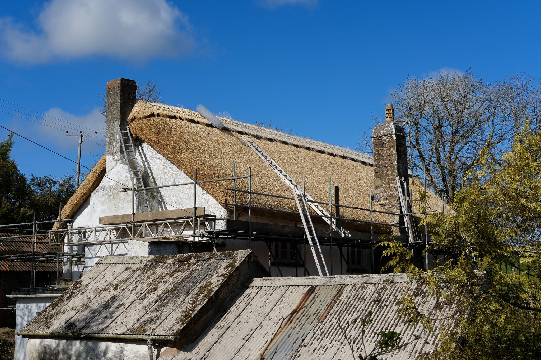 Thatched roof, Chittlehampton, Devon